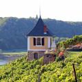 Winzerhäuschen oberhalb der Elbe in den Weinbergen