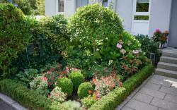 Blumenpracht im Garten