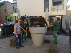 Matthias Böwing und seine Kollegen vom Bauhof platzieren die mobilen Pflanztöpfe