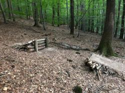 Ein illegaler Trail mit Rampen auf dem Kappelberg